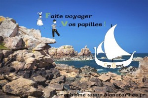 Graphisme Cap ouest